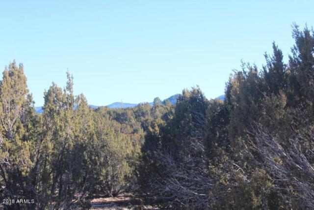 Lot 178 Park Show Low, Vernon, AZ 85940 (MLS #5750193) :: My Home Group