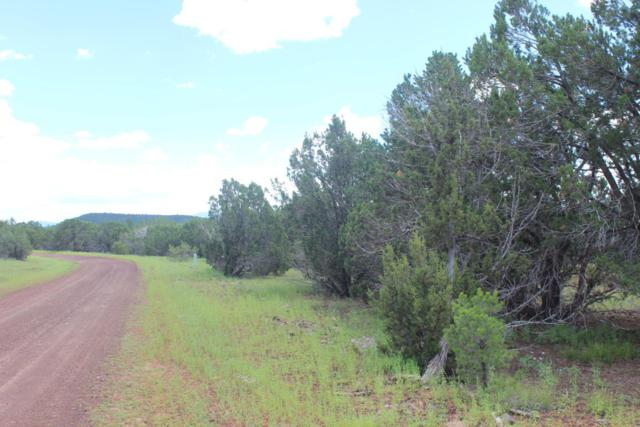 Lots 179- 180 Park Show Low, Vernon, AZ 85940 (MLS #5750198) :: The Garcia Group @ My Home Group