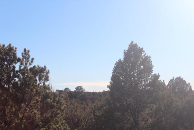 Lots 178- 180 Park Show Low, Vernon, AZ 85940 (MLS #5750201) :: My Home Group