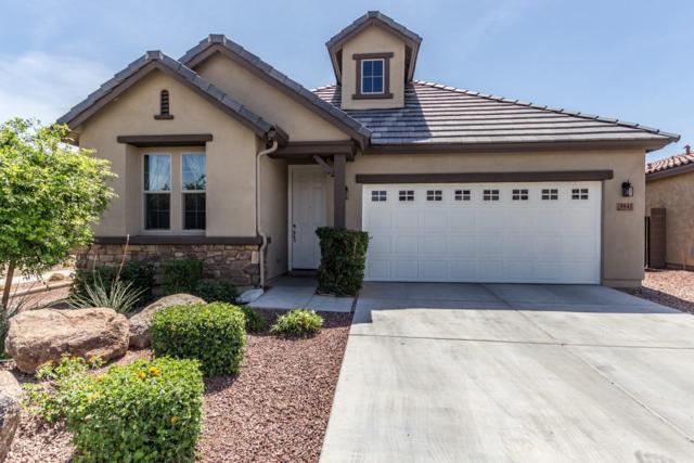 9841 W Via Del Sol, Peoria, AZ 85383 (MLS #5750244) :: Kepple Real Estate Group