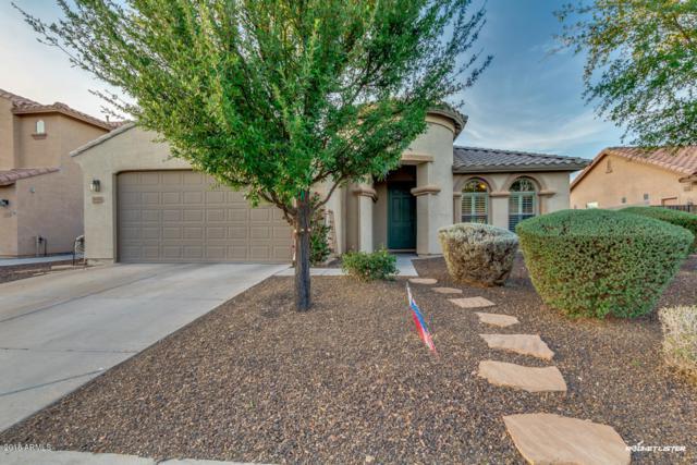 1678 E Indigo Street, Gilbert, AZ 85298 (MLS #5750623) :: Essential Properties, Inc.