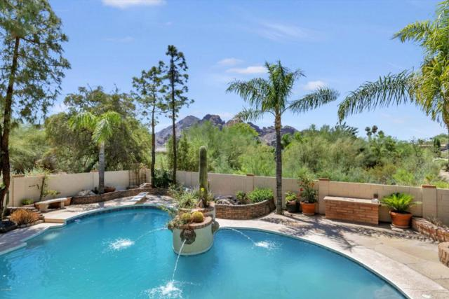 4514 E Pebble Ridge Road, Paradise Valley, AZ 85253 (MLS #5750639) :: The W Group