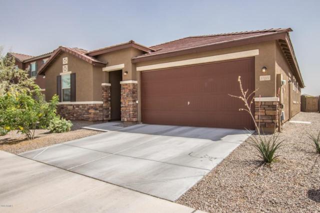 17221 W Hammond Street, Goodyear, AZ 85338 (MLS #5751155) :: My Home Group