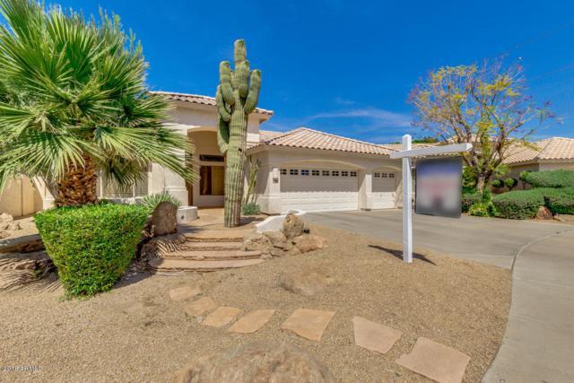 7084 S Hazelton Lane, Tempe, AZ 85283 (MLS #5751327) :: Yost Realty Group at RE/MAX Casa Grande