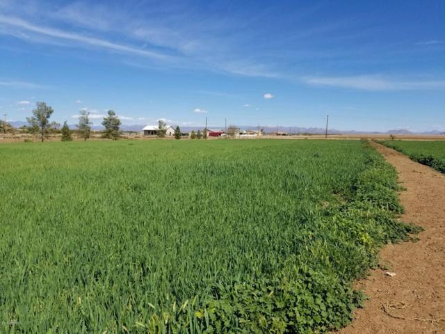 27516 N Cooper Road, Florence, AZ 85132 (MLS #5751369) :: Riddle Realty Group - Keller Williams Arizona Realty