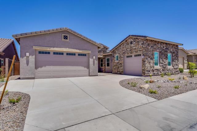 10414 W Nosean Road, Peoria, AZ 85383 (MLS #5751404) :: Occasio Realty