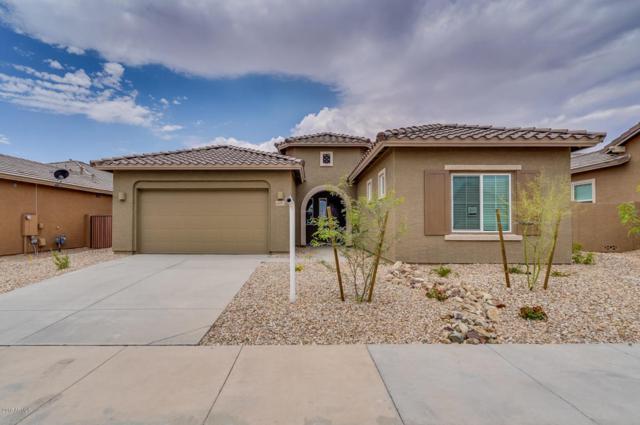 24072 N 165TH Drive, Surprise, AZ 85387 (MLS #5751558) :: Lifestyle Partners Team