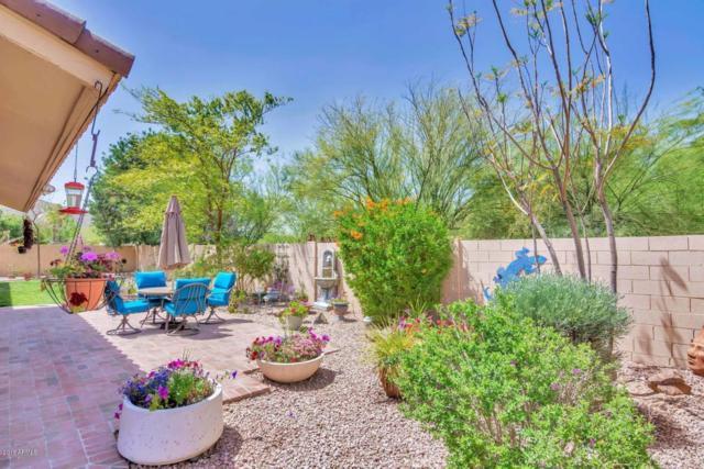 13224 N 13TH Lane, Phoenix, AZ 85029 (MLS #5751565) :: Lifestyle Partners Team