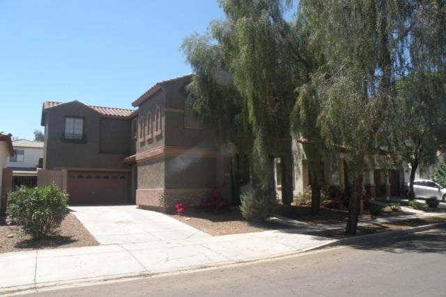 3647 E Temecula Way, Gilbert, AZ 85297 (MLS #5751725) :: The Everest Team at My Home Group