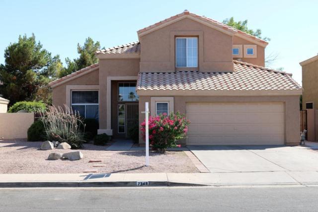 7349 E Lobo Avenue, Mesa, AZ 85209 (MLS #5753026) :: My Home Group