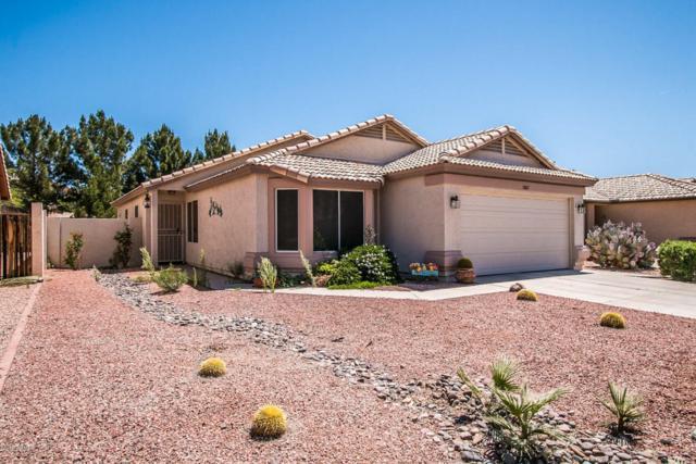 20617 N 102ND Lane, Peoria, AZ 85382 (MLS #5753278) :: Desert Home Premier