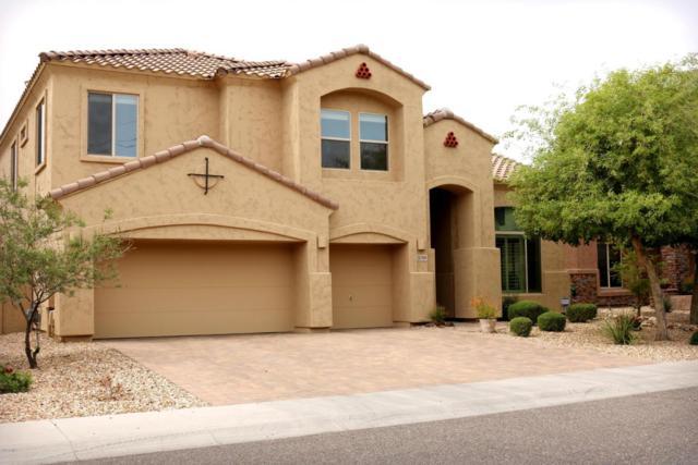 5749 W Plum Road, Phoenix, AZ 85083 (MLS #5753384) :: The Laughton Team