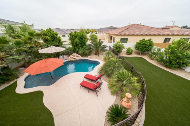 2460 N 156TH Drive, Goodyear, AZ 85395 (MLS #5753391) :: REMAX Professionals