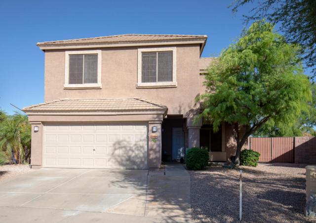 26444 N 42ND Place, Phoenix, AZ 85050 (MLS #5753415) :: My Home Group