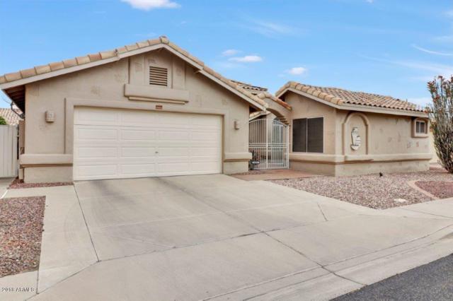 14208 W Morning Star Trail, Surprise, AZ 85374 (MLS #5753808) :: Desert Home Premier