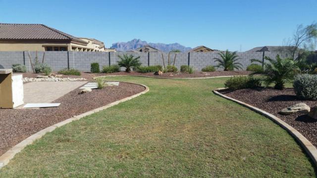 10023 E Grandview Street, Mesa, AZ 85207 (MLS #5754094) :: Arizona 1 Real Estate Team