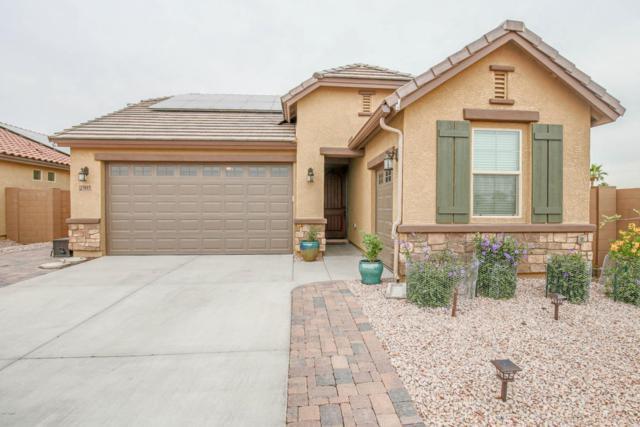 15615 N 109TH Avenue, Sun City, AZ 85351 (MLS #5754230) :: REMAX Professionals