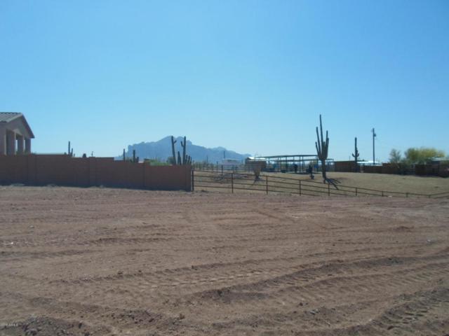 393 W Canyon Street, Apache Junction, AZ 85120 (MLS #5754323) :: Yost Realty Group at RE/MAX Casa Grande