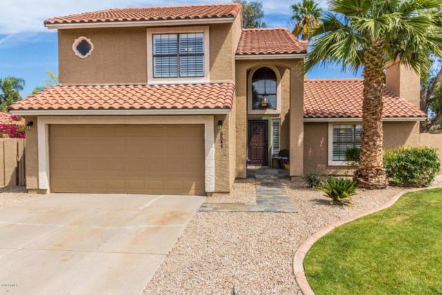 5544 E Paradise Lane, Scottsdale, AZ 85254 (MLS #5754574) :: Lifestyle Partners Team