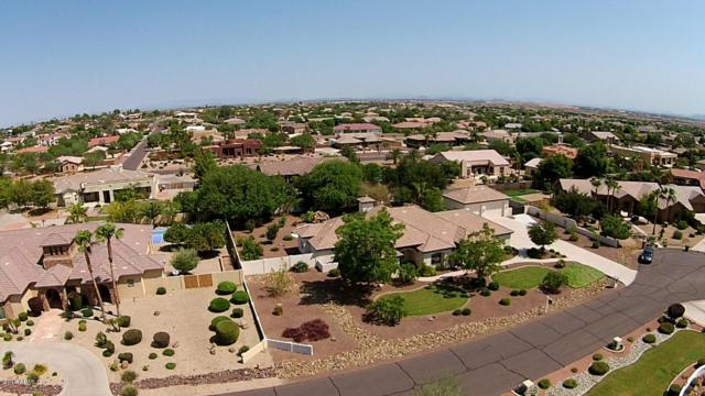 12814 W Denton Avenue, Litchfield Park, AZ 85340 (MLS #5755265) :: Devor Real Estate Associates