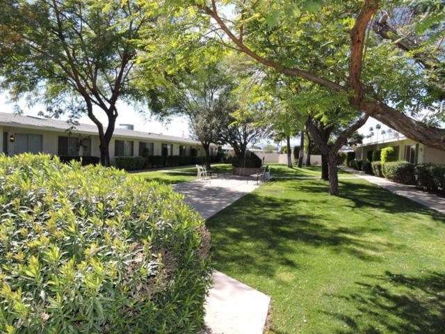 10405 N 108TH Avenue, Sun City, AZ 85351 (MLS #5755420) :: The Worth Group