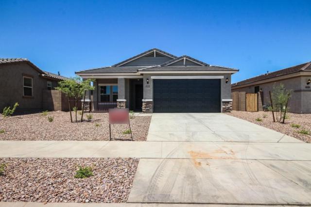 16252 W Canterbury Drive, Surprise, AZ 85379 (MLS #5755927) :: The Daniel Montez Real Estate Group