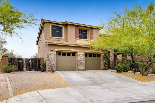 8405 W Tether Trail, Peoria, AZ 85383 (MLS #5756522) :: My Home Group