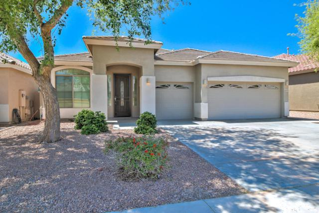 22332 N 104TH Lane N, Peoria, AZ 85383 (MLS #5756560) :: Occasio Realty