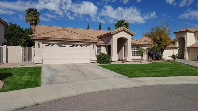 6358 W Tonopah Drive, Glendale, AZ 85308 (MLS #5756656) :: Essential Properties, Inc.