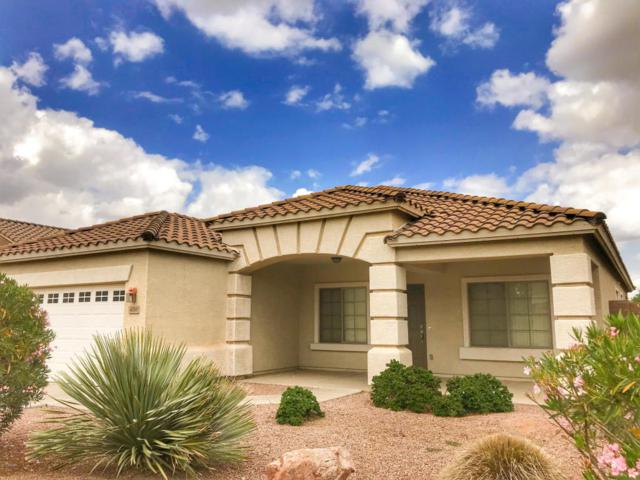 4210 E Winged Foot Place, Chandler, AZ 85249 (MLS #5756728) :: My Home Group