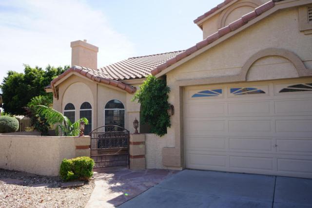 5268 W Potter Drive, Glendale, AZ 85308 (MLS #5756801) :: Essential Properties, Inc.