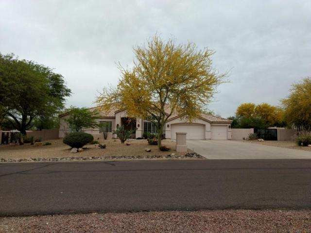 12918 W San Juan Avenue, Litchfield Park, AZ 85340 (MLS #5756886) :: Group 46:10