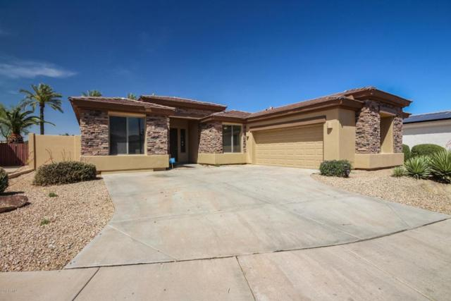 14488 W Cora Lane, Goodyear, AZ 85395 (MLS #5757415) :: Desert Home Premier