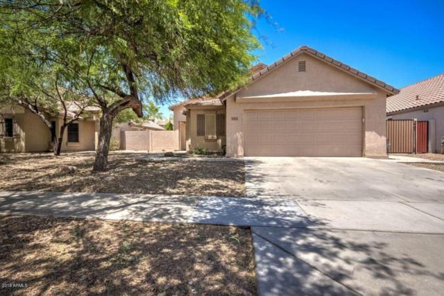 3912 E Ironhorse Road, Gilbert, AZ 85297 (MLS #5757510) :: My Home Group