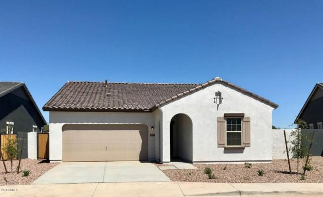 36990 W Nola Way, Maricopa, AZ 85138 (MLS #5757586) :: My Home Group