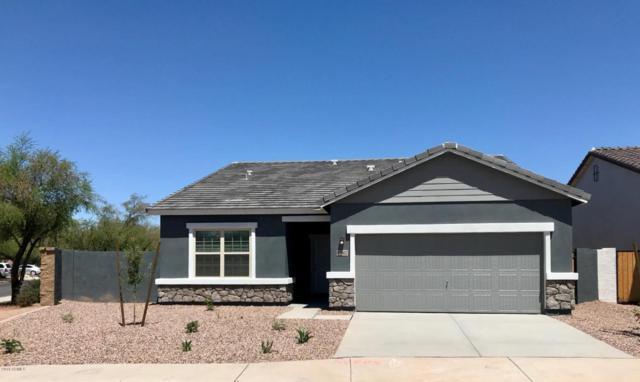 37002 W Nola Way, Maricopa, AZ 85138 (MLS #5757589) :: My Home Group
