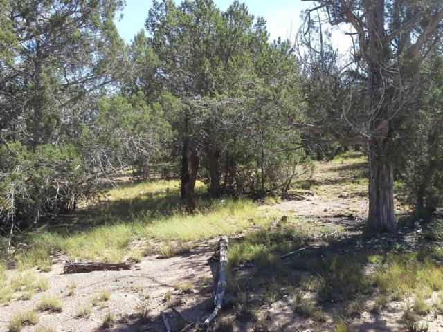 Lot 627 Ancient Way, Seligman, AZ 86337 (MLS #5758103) :: Yost Realty Group at RE/MAX Casa Grande