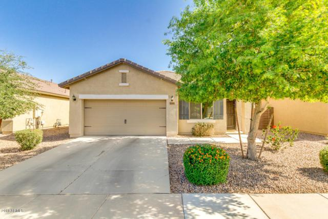 42582 W Monteverde Drive, Maricopa, AZ 85138 (MLS #5758117) :: Yost Realty Group at RE/MAX Casa Grande
