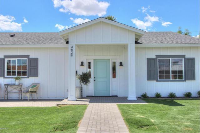 3828 N 42ND Place, Phoenix, AZ 85018 (MLS #5758395) :: Essential Properties, Inc.