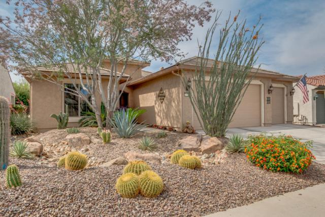 27285 W Potter Drive, Buckeye, AZ 85396 (MLS #5759472) :: Yost Realty Group at RE/MAX Casa Grande