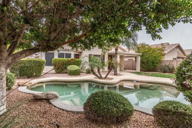 1021 W Kelton Lane, Phoenix, AZ 85023 (MLS #5760221) :: Devor Real Estate Associates