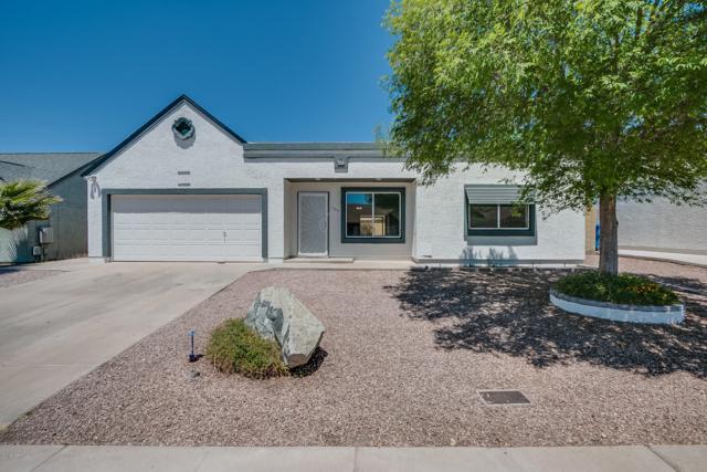 1344 E Piute Avenue, Phoenix, AZ 85024 (MLS #5760271) :: RE/MAX Excalibur