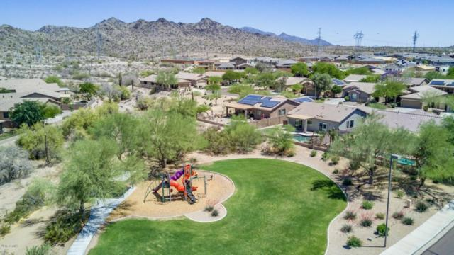 17536 W Cactus Flower Drive, Goodyear, AZ 85338 (MLS #5760513) :: Kortright Group - West USA Realty