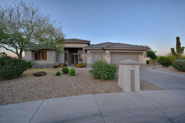 17946 N Catalina Court, Surprise, AZ 85374 (MLS #5760540) :: The Everest Team at My Home Group