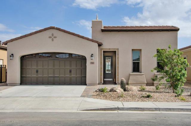 741 E La Palta Street, San Tan Valley, AZ 85140 (MLS #5760788) :: My Home Group