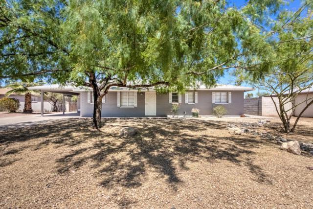 2316 W Earll Drive W, Phoenix, AZ 85015 (MLS #5761127) :: The W Group
