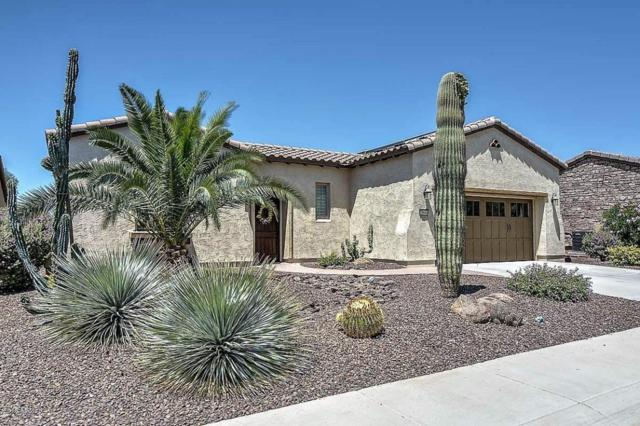 29644 N 130TH Glen, Peoria, AZ 85383 (MLS #5761978) :: Essential Properties, Inc.