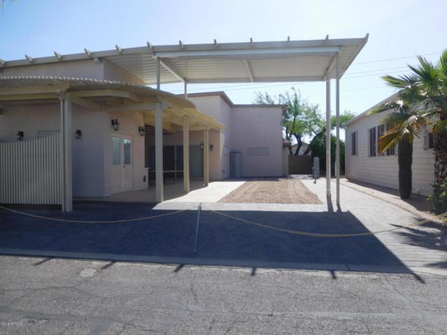 17200 W Bell Road #1424, Surprise, AZ 85374 (MLS #5762085) :: Phoenix Property Group