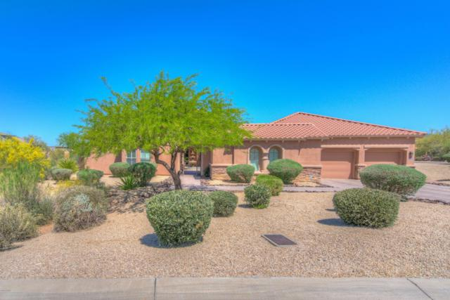 10876 E Volterra Court, Scottsdale, AZ 85262 (MLS #5762684) :: The Daniel Montez Real Estate Group