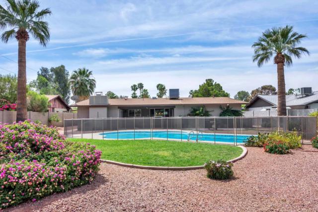 648 E Hearn Road, Phoenix, AZ 85022 (MLS #5762907) :: The Daniel Montez Real Estate Group